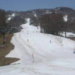 春スキーで新潟に行くならおすすめはここ!初級者向けからご紹介!